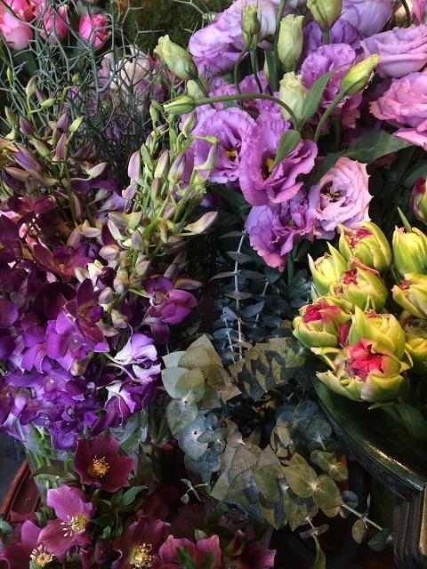 春のお花たくさん入荷中